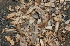 Серии древесины стоковые изображения