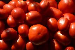 Серии красных томатов Стоковая Фотография