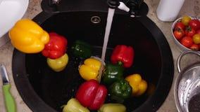 Серии красочных болгарских перцев падают в кухонную раковину сток-видео