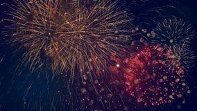 Серии красочных взрывов в ночное небо Пестротканый взрыв фейерверков, во время патриотического праздника сток-видео