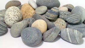 Серии моря трясут в различных размерах и формах Стоковые Фото