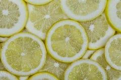 Серии органических лимонов отрезали в куски стоковые изображения rf