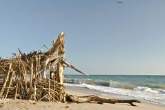 серии пляжа приютят бечевник деревянный Стоковое фото RF