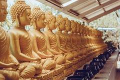 Серии сидеть золотые статуи Будды в Таиланде Стоковое Изображение RF