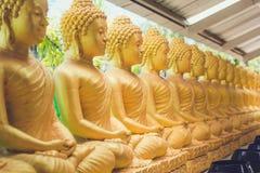 Серии сидеть золотые статуи Будды в Таиланде Стоковое фото RF