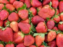 серии ягод Стоковые Фотографии RF