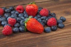 Серии ягод на старой древесине Стоковые Изображения RF