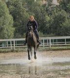 серии riding лошади девушки чертежа vector западное одичалое Стоковое Изображение RF