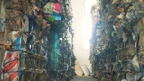 Серии wastepaper на сбросе, конца вверх Связанные стога картона на junkyard для рециркулировать акции видеоматериалы