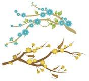 серия ветви флористическая Стоковые Фото