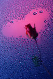 серия влюбленности предпосылки истинная Стоковые Фото