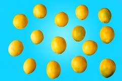 Серия всех желтых свежих лимонов Стоковое Изображение RF