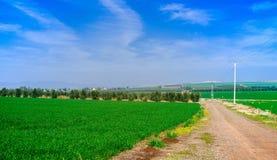 Серия Галилея Holyland fields панорама 2 стоковое фото rf