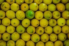 серия лимонов еды предпосылки Стоковое фото RF