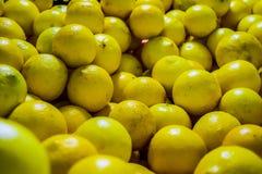 серия лимонов еды предпосылки Стоковая Фотография RF