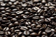 серия кофе фасолей Стоковые Фото