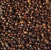 серия кофе фасолей Стоковое Фото