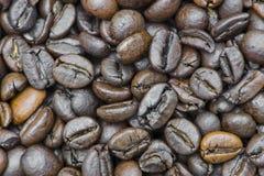 серия кофе фасолей Стоковые Фотографии RF