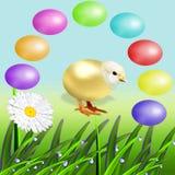 Серия красочных пасхальных яя Стоковые Изображения RF