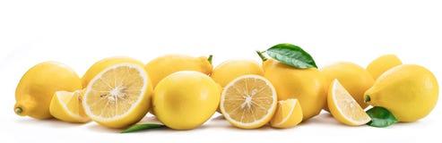 Серия плодоовощей лимона при изолированные листья лимона вегетация неба моря Сардинии фото изображения береговой линии зеленая го Стоковые Изображения