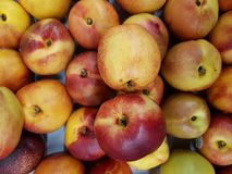 серия плодоовощей нектарина, текстурированной предпосылки Стоковые Фото