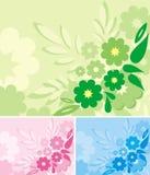 серия предпосылки флористическая Стоковые Изображения