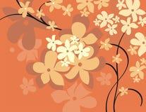 серия предпосылки флористическая Стоковое фото RF