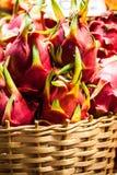 Серия дракона приносить в тропическом рынке Стоковое Фото