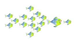 Серия рыб может нанести поражение большой рыбе Стоковое фото RF