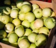 Серия свежего зеленого яблока лета Стоковое фото RF