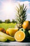 Серия свежих фруктов на деревянной предпосылке Стоковые Изображения RF