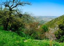 Серия Святой Земли - верхняя Галилея - Ein Yorkat 1 стоковая фотография rf