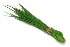 серия травы chives Стоковые Изображения RF