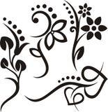 серия флористического орнамента Стоковая Фотография RF