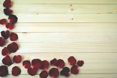 серия флористических лепестков предпосылки розовая Стоковые Фотографии RF