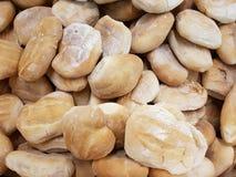 серия хлеба пшеницы для сопровождения еды, в хлебопекарне, предпосылке и текстуре Стоковое Изображение RF