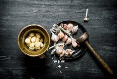 серия чеснока еды предпосылки Свежий чеснок и миномет с пестиком Стоковая Фотография RF