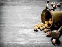 серия чеснока еды предпосылки Свежий чеснок и миномет с пестиком Стоковые Изображения RF