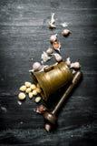 серия чеснока еды предпосылки Свежий чеснок и миномет с пестиком Стоковое Изображение RF