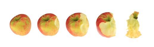 серия яблока Стоковые Фотографии RF