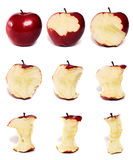 серия яблока Стоковое Изображение