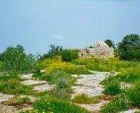 Серия Holyland - гад Hill4 стоковое изображение