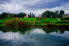 Серия Holyland - Afek национальное Park#6 Стоковая Фотография