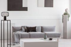 Серое одеяло и черная подушка на удобной софе в стильном интерьере живущей комнаты стоковое изображение rf