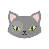 серое домашнее животное зеленых глаз кота Стоковая Фотография RF