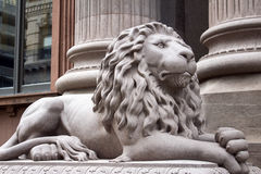 Серое право фронта статуи льва стоковая фотография rf