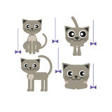 Серое усаживание кота Стоковая Фотография RF
