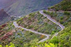Серпентин горы Ландшафт ущелья Masca Красивый соперничайте Стоковые Изображения RF