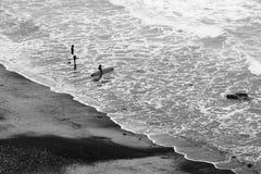 Серферы идя в воду стоковые изображения rf
