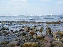 Серферы на море Минска, Беларуси Стоковая Фотография